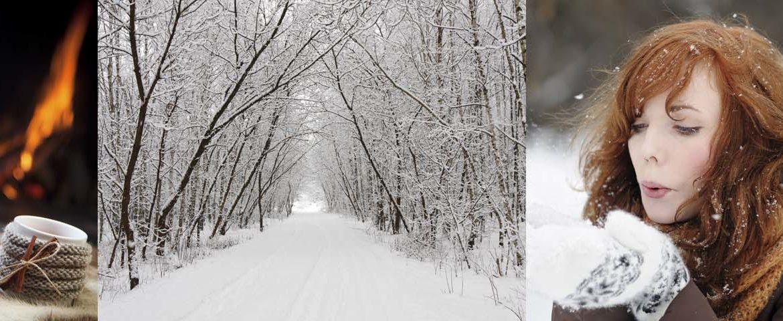 Entspannen am Kamin, Winterlandschaft, Winterspaziergang und Dammwild